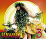 SANDII'S HAWAI'I 3rd