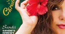Sandii's Christmas Hawai'i ~Sandii's Hawai'i 6th~